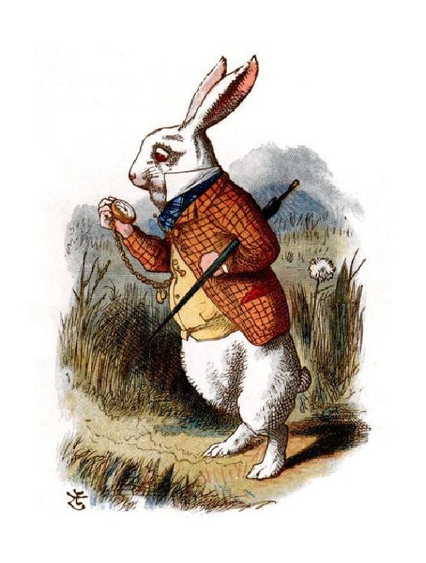 El arte de perseguir al conejo blanco - MalaTinta Magazine