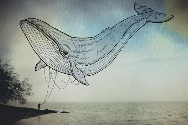 'Oceanographies' - Giulia & Luca