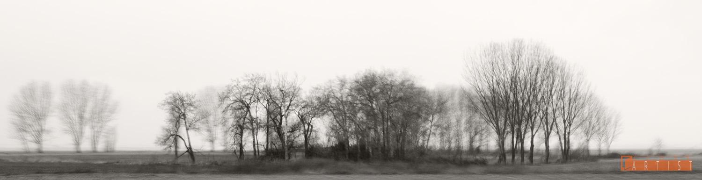 Camino a Cuellar - Raquel Fragua