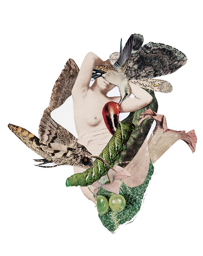 'Metamorphosis' - Rocío Montoya
