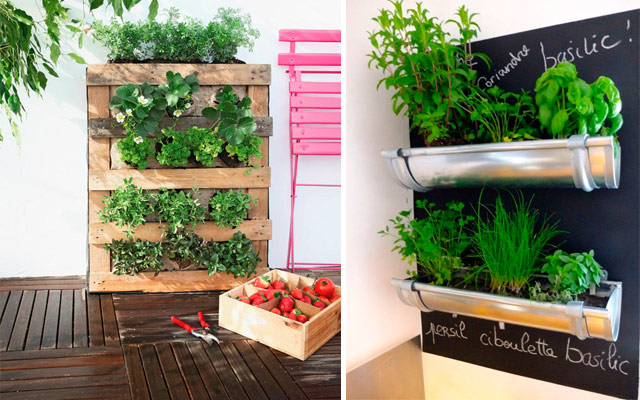 31 ideas creativas con plantas para tu cocina malatinta - Como decorar una pared de cocina ...