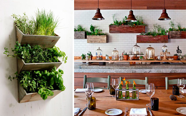 31 ideas creativas con plantas para tu cocina malatinta for Ideas para decorar paredes de jardin
