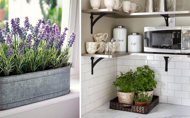 31 ideas creativas con plantas para tu cocina malatinta for Plantas para decoracion minimalista