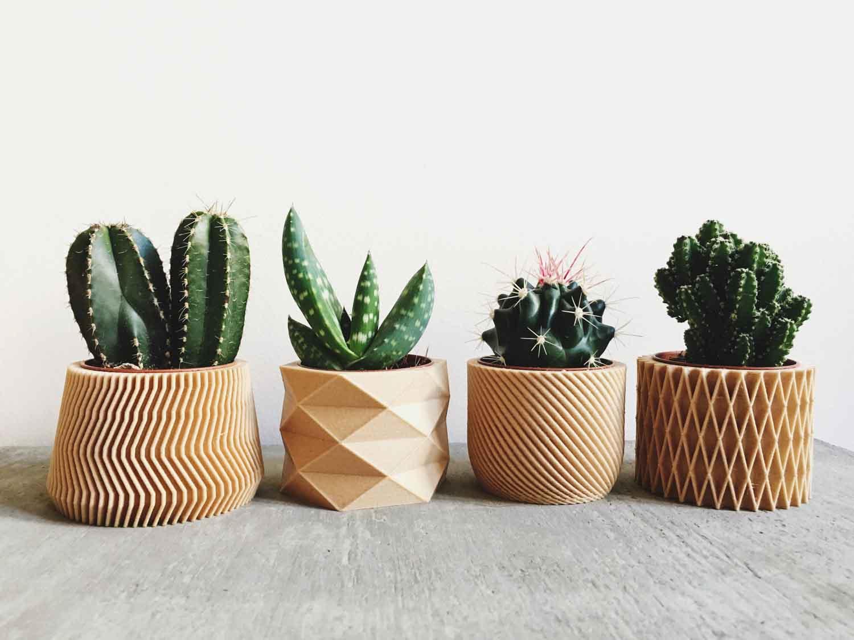 10 geniales maceteros para darle un toque original a tus cactus. Black Bedroom Furniture Sets. Home Design Ideas